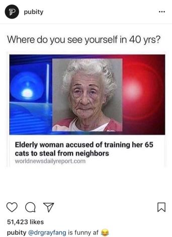 65 cats